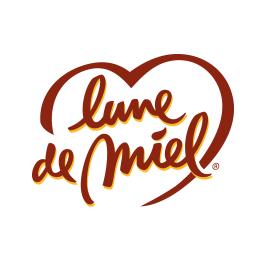 logo_LDM
